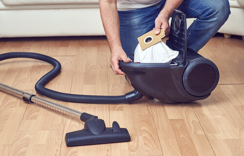 bag for vacuum cleaner