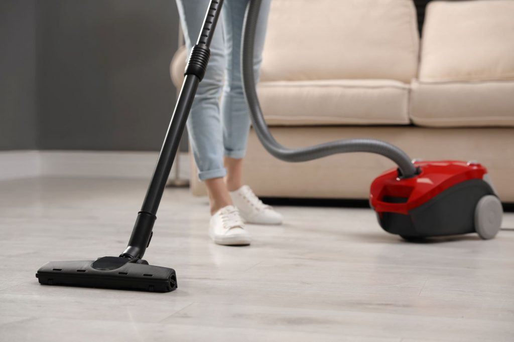 Best Vacuum Cleaner With No Beater Bar