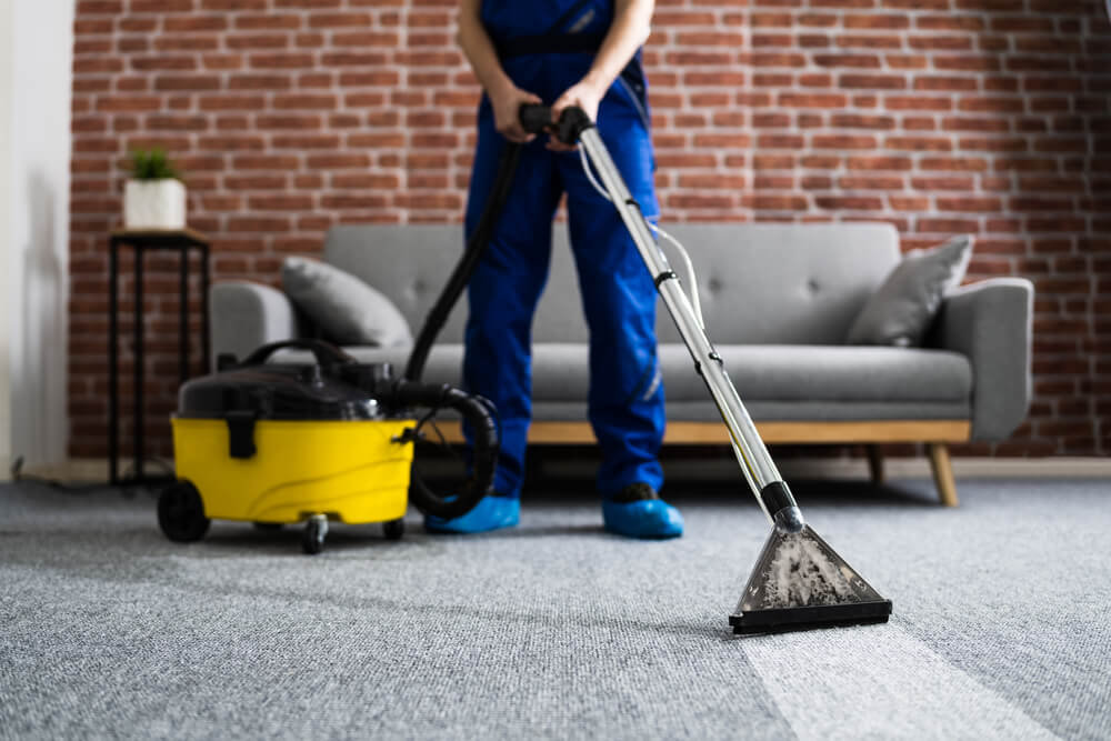 Cleaning carpet with shop vac